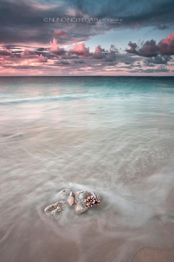 Ilha de Goa, Moçambique